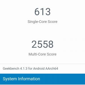 Homtom S8 Review Benchmark Geekbench Score